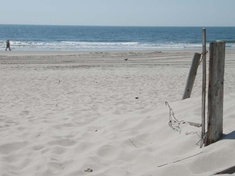 Beachfront Bargain! Step Off Your Deck Onto a Great Beach!, aluguéis de temporada em Ocean City