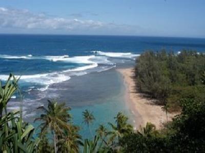 1 Bedroom Ocean View Condo - Pono Kai, alquiler de vacaciones en Kapaa