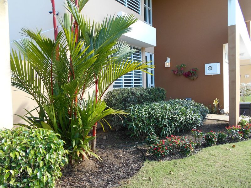 Private home close to BEACH, RAIN FOREST and POOL!, alquiler vacacional en Bosque Nacional El Yunque