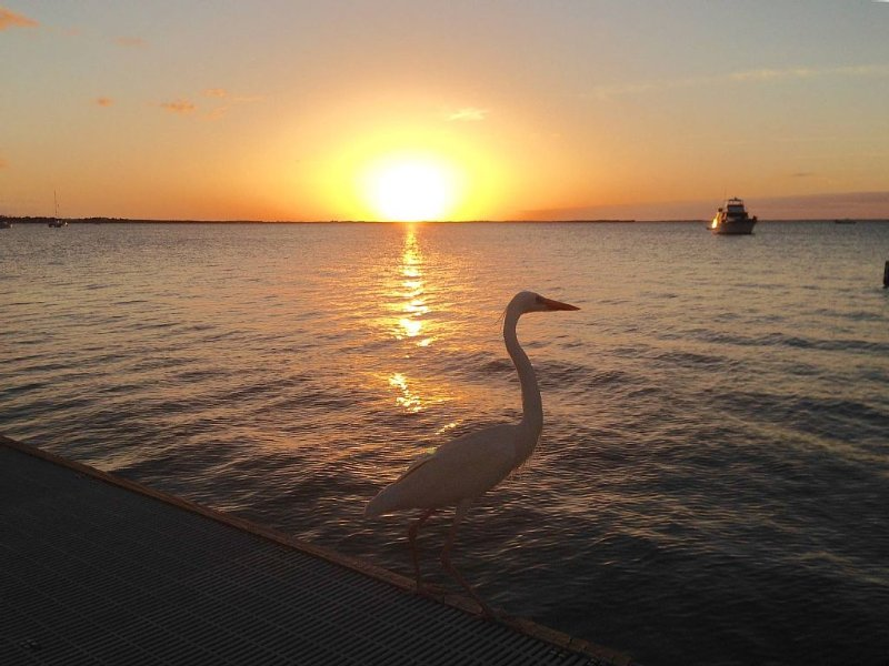 ' Sunset Serenity at Moon Bay '  with Boat Slip, vacation rental in Key Largo