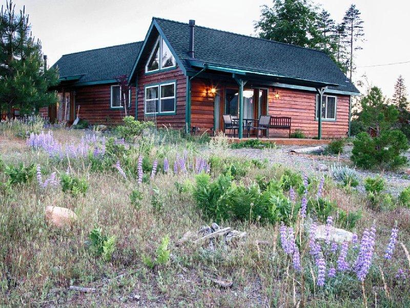 Yosemite Hilltop Cabins, Lupin Cabin,15 min to the Valley floor, Wifi, alquiler de vacaciones en Parque Nacional de Yosemite