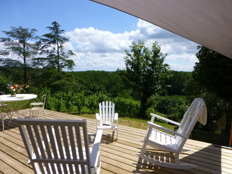 La Petite Vigne, French Country in the heart of Historical Amboise, vacation rental in Amboise