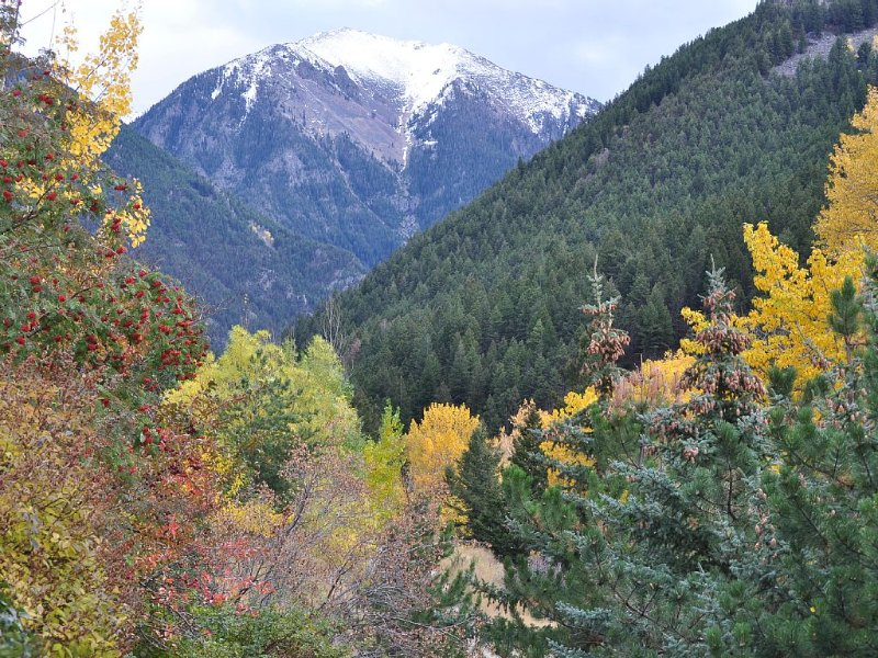Private Creekside Retreat Near Yellowstone & Chico Hot Springs, holiday rental in Pray