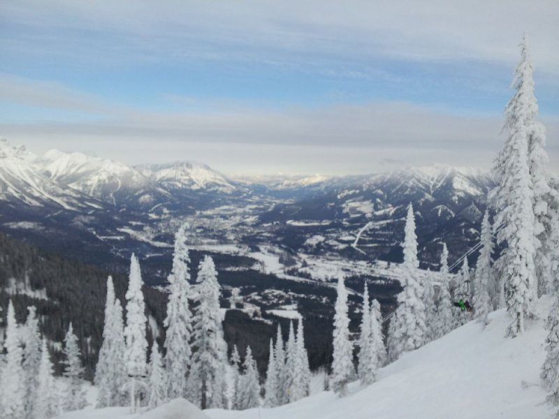 #8, Tree Tops, Ski In/Ski Out,, holiday rental in Big White