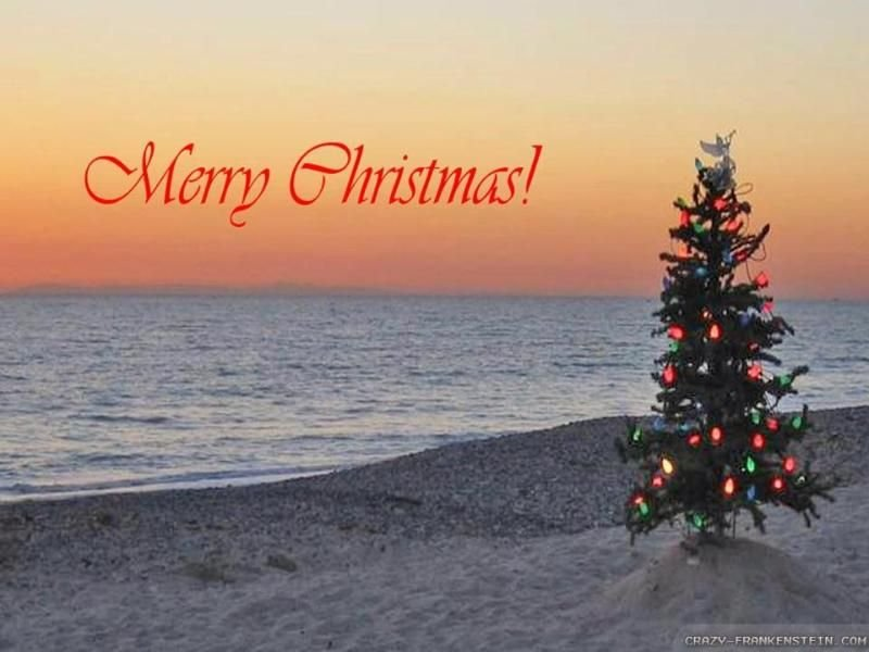 Even Christmas is glorious in West Cape May.  Sunset at The Cove is the Best!