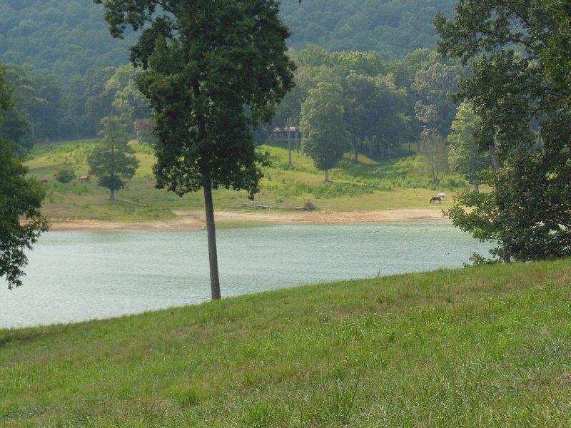 lake behind cabin