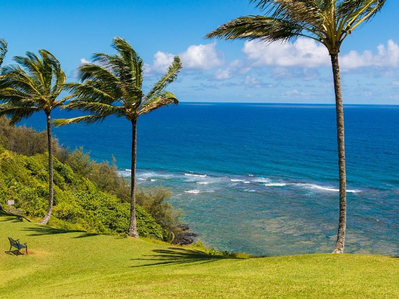 White water ocean view., vacation rental in Princeville