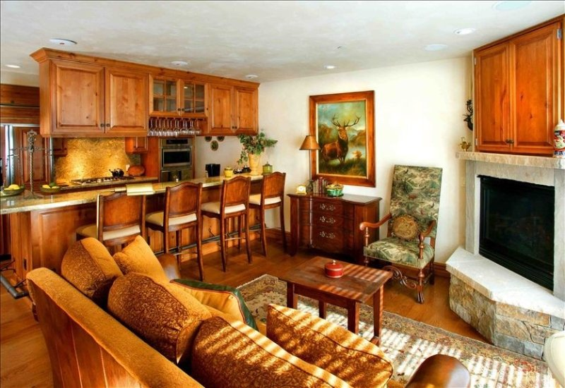 Fabulous Ajax View #421 - 3 BR/2 BA - Walk to Town and Lifts, holiday rental in Aspen