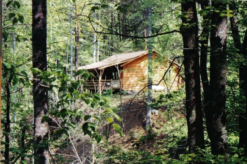 Secluded Log Cabin Retreat, holiday rental in Franklin