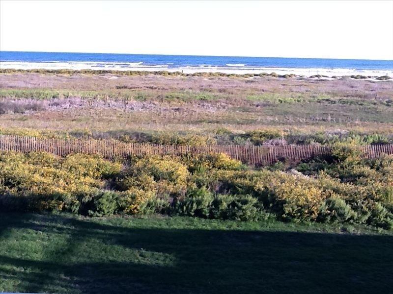 Beautiful Beachfront Condo - Wi-Fi / HBO – semesterbostad i Galveston