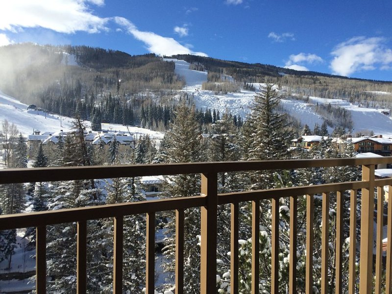 Walking Distance To Ski Lifts & Village Restaurants  - Epic Views!, holiday rental in Vail