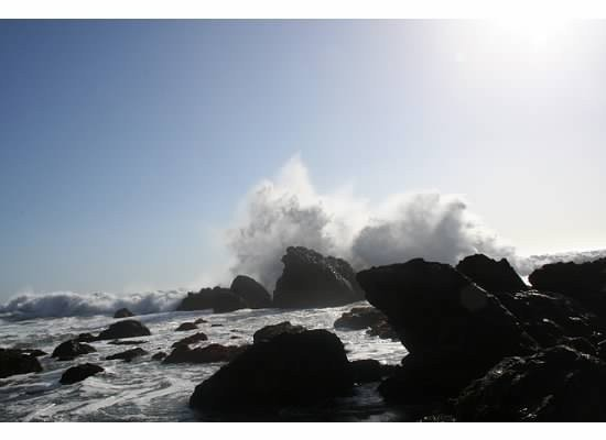 Amazing Ocean View, Walk To Beach, Cozy Carmet Cottage, alquiler de vacaciones en Bodega Bay
