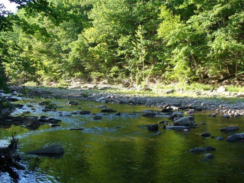 Outdoor Enthusiasts Dream! A River Runs Through It!, location de vacances à Ulster