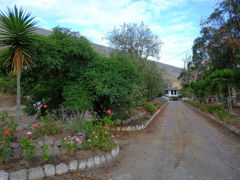 Villas Located Two Miles From The Equator In The Middle Of The World!!!, location de vacances à Quito