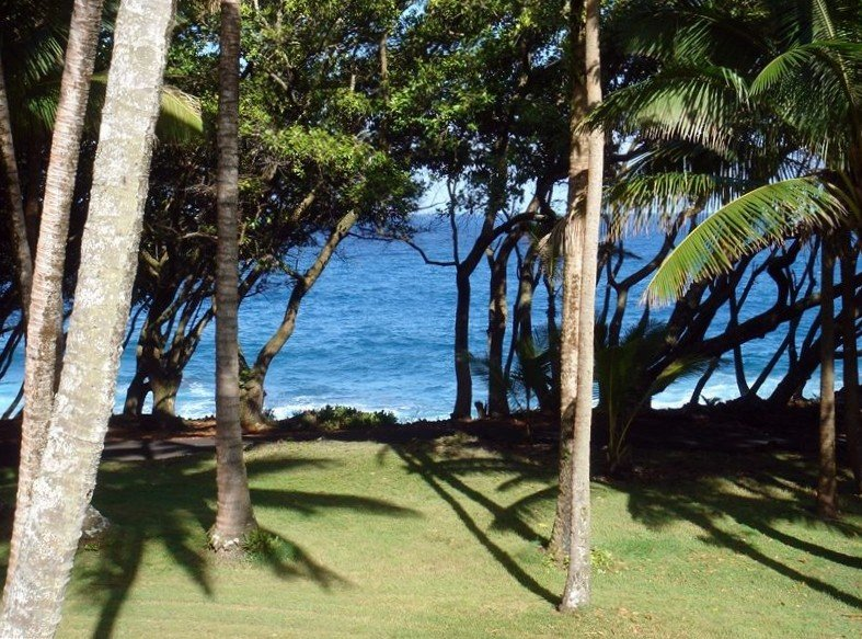 Oceanfront Cottage in Scenic 'Old Hawaii' , the Original Rainbow Dreams Cottage, vacation rental in Kapoho
