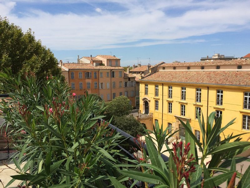Marvellous duplex with large terrace, air-conditionning, wifi, historical area, vacation rental in Aix-en-Provence
