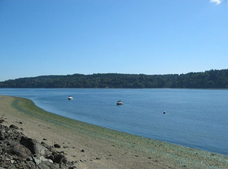 Puget Sound Beachfront Cabin *$179/nt SUMMER RATE SPECIAL*, holiday rental in Wauna