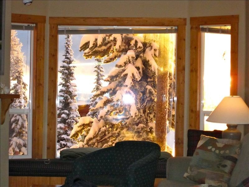 Have fun with the Family- Hot coco by the Fire and apres ski hot tub!, holiday rental in Big White