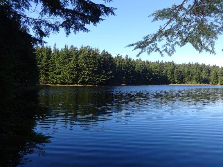 Mountain Lake in Moran State Park.