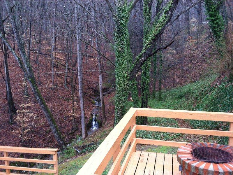 Cozy Cabin with Waterfalls 'Tween Franklin / Highlands, alquiler de vacaciones en Franklin