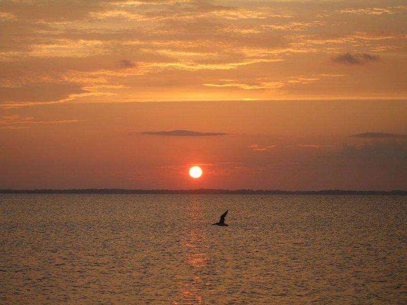 sunset on the sound!