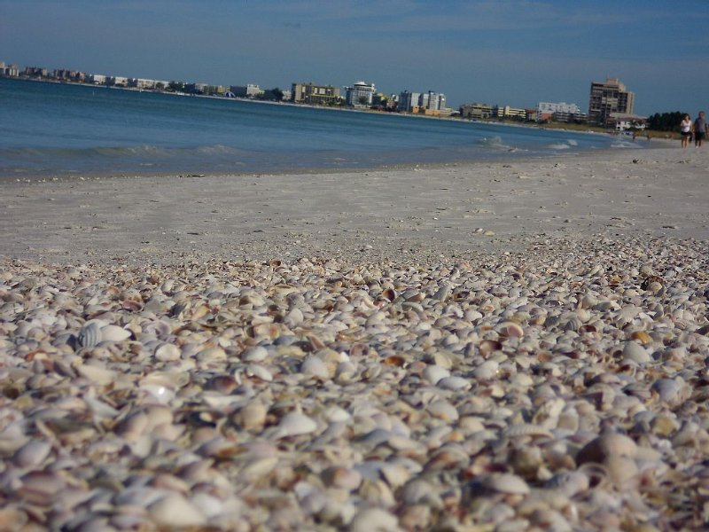 Discover The Charm Of St Pete Beach #2, holiday rental in St. Pete Beach