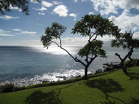 Located Directly on the Oceanfront with Spectacular Views, vacation rental in Lahaina