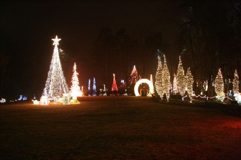 Time for Garven Woodland Gardens must see Christmas lights