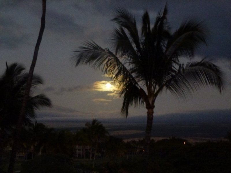 Vista Waikoloa Penthouse With Privacy And Wonderful Views, location de vacances à Kohala Coast