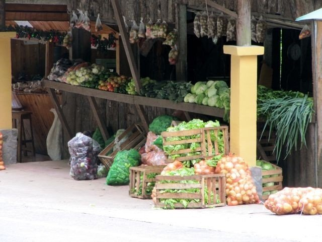 Enjoy fresh fruits and veggies from the area.