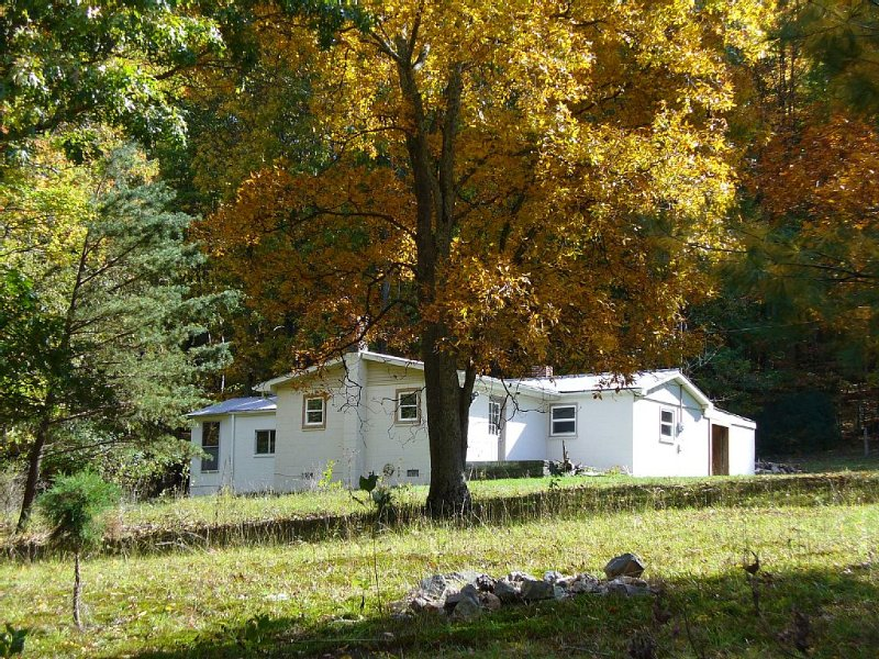 Private, Cozy Cottage Nestled On Peter's Mountain., holiday rental in Greenville