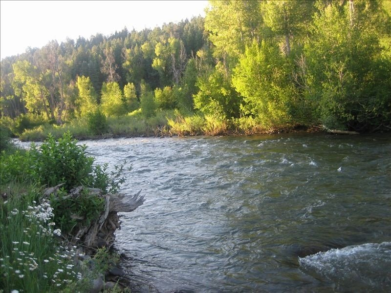 Beautiful Home on San Juan River, Dancing River, holiday rental in Pagosa Springs