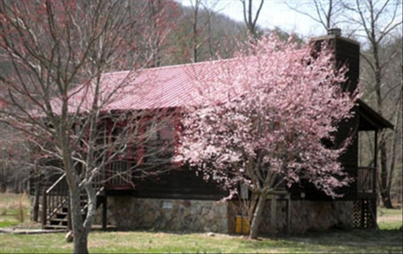 Nottely River Cabin-Trout Fishing-5 Mins. to Vogel St. Park, holiday rental in Blairsville