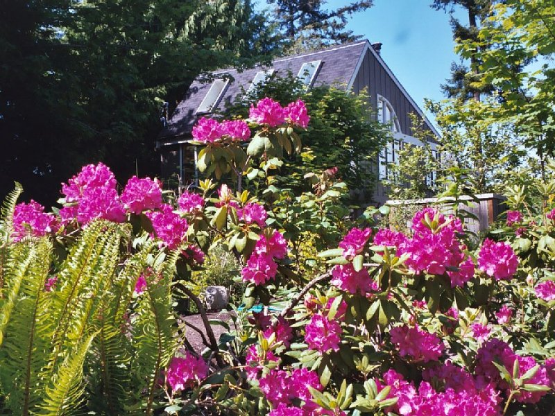 Tranquility and Peaceful Guest House Offers Guests A Quiet & Beautiful Getaway!, location de vacances à Bainbridge Island