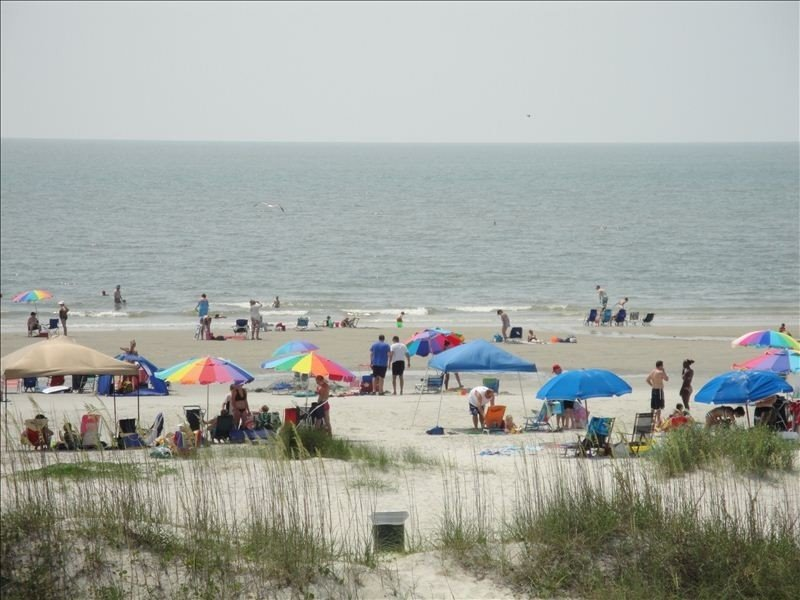 Wow! - Panoramic View -- Direct Oceanfront, vacation rental in Bluffton