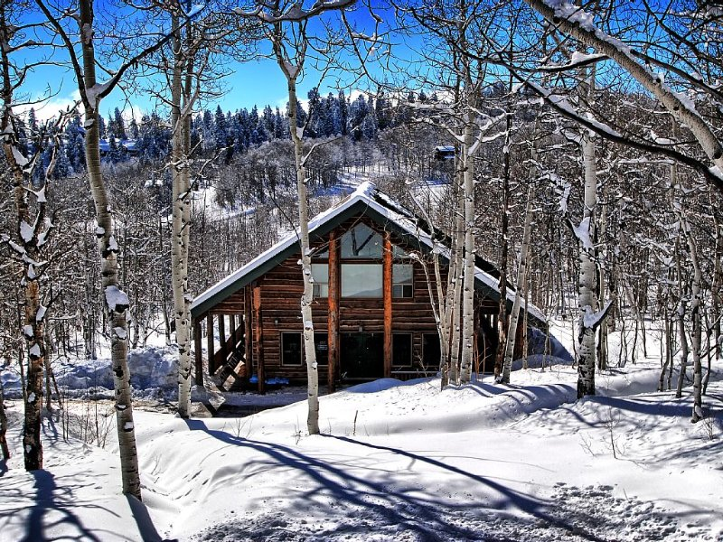 Rustic Cabin Getaway, Perfect for Large Groups, casa vacanza a Coalville