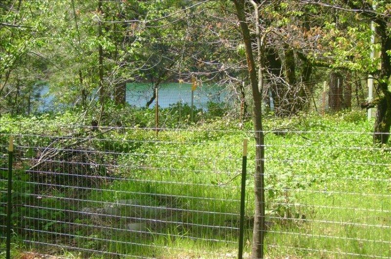 Lakeview de l'arrière de la maison