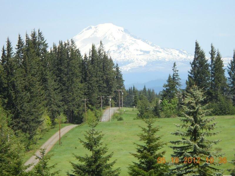 SOCIAL DISTANCE GETAWAY! Stunning Views, HIKE, MTN. BIKE, WINDSURF! KITE!, location de vacances à White Salmon