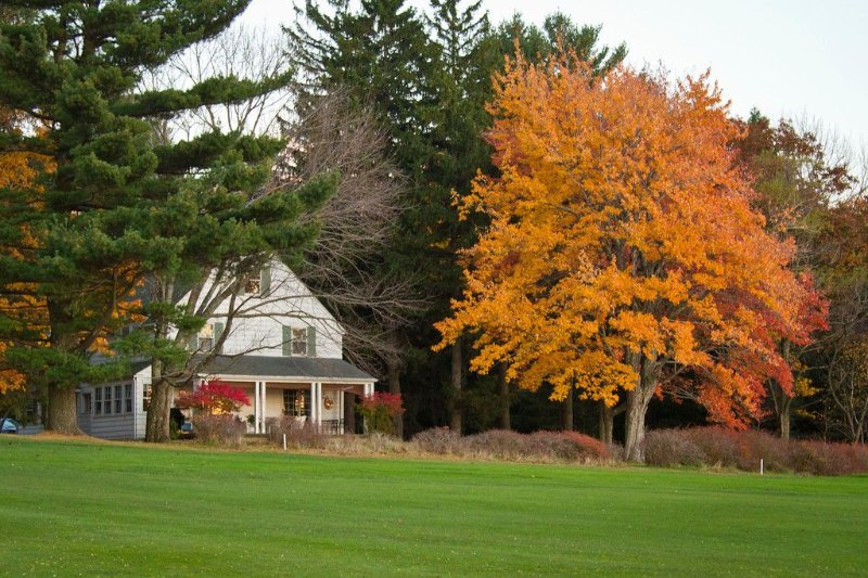Cottage #8 located on Skytop Golf Course