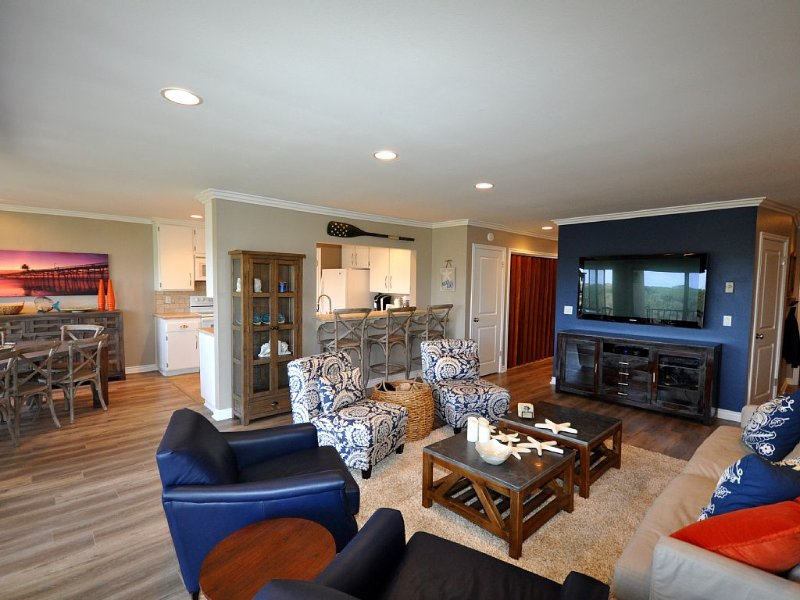 Contemporary South County Escape Walking Distance To Beach, vacation rental in San Onofre