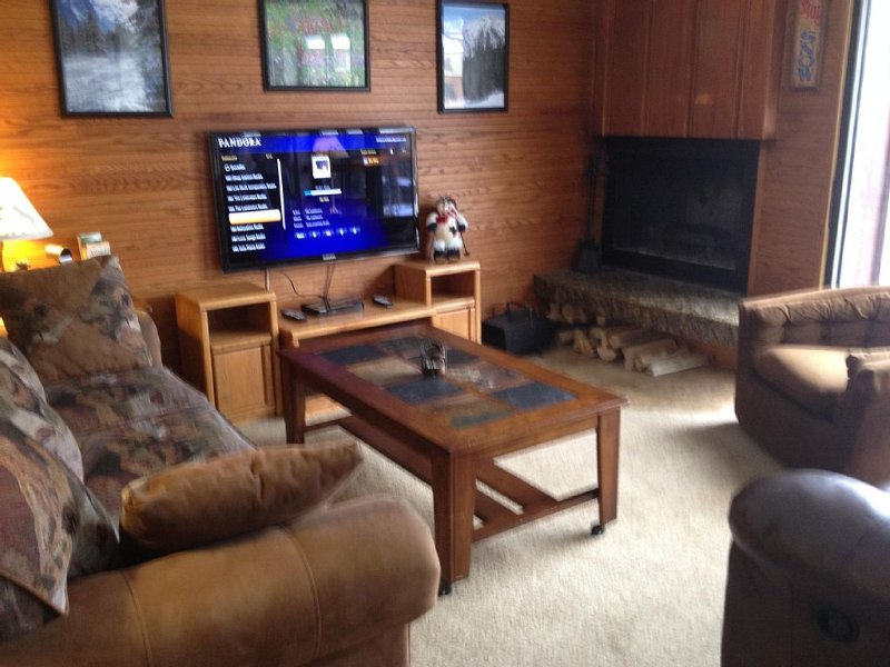 46' HDTV & DVD/CD with free Netflix & Pandora.  Free firewood for fireplace!