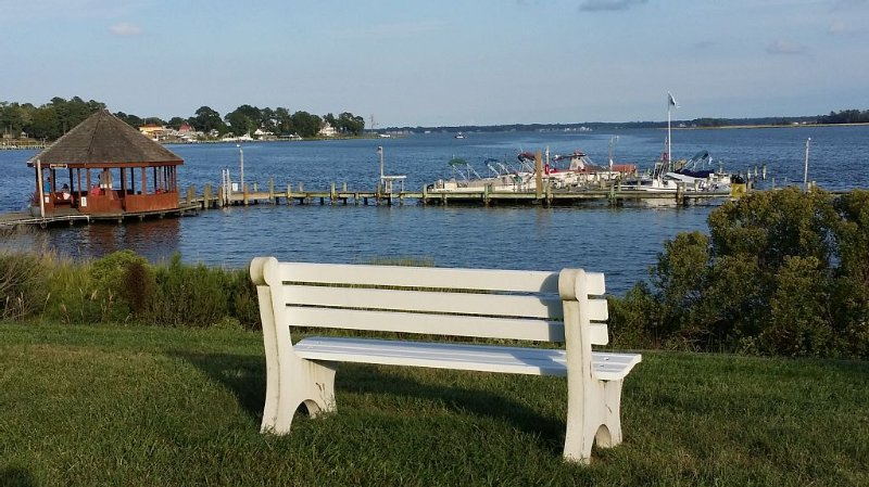Pool and marina access on the beautiful Indian River - close to Delaware beaches, alquiler vacacional en Frankford