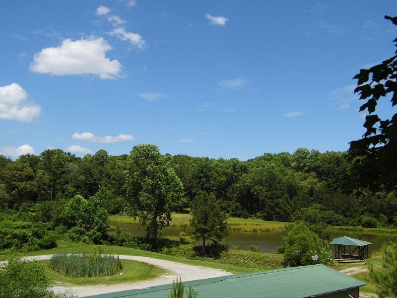 Cattail Holler Lodge On 170 Gated Acres With Spring Fed Ponds, location de vacances à Bumpus Mills