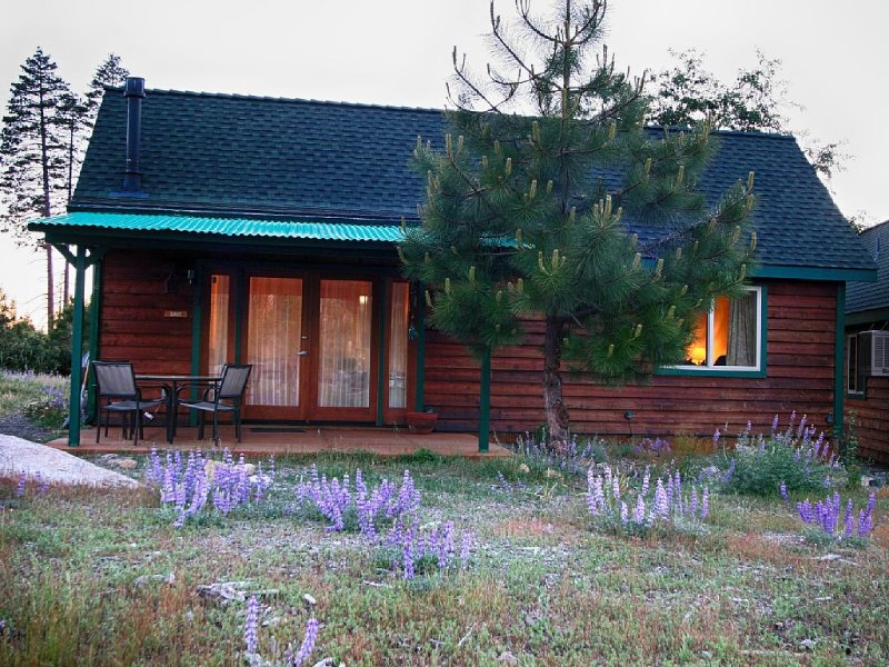 Yosemite Hilltop Cabins, Sage Cabin,15 min to the Valley floor, Wifi, holiday rental in Yosemite National Park