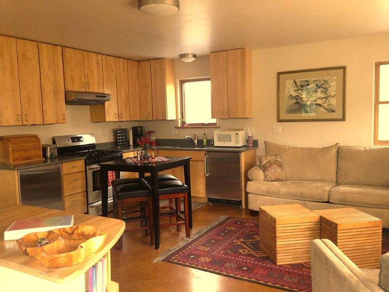 Cozy Modern Apartment ~ walking distance to Carbondale's restaurants/bars/sights, location de vacances à Carbondale