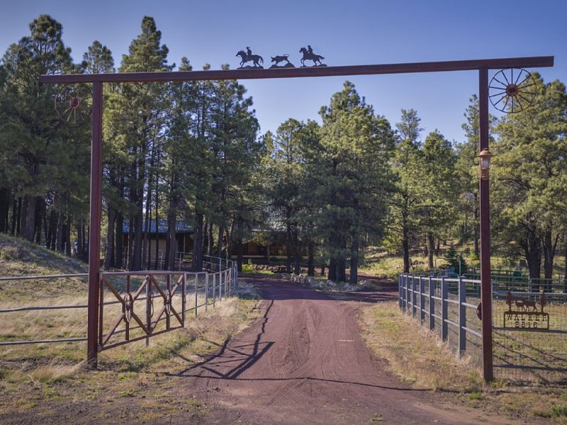 10 acre private ranch in the Coconino forest, vacation rental in Flagstaff
