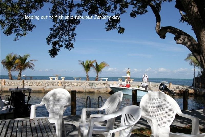 Mitchell's Keys Villa - Private, Secluded House on the Bay, holiday rental in Islamorada