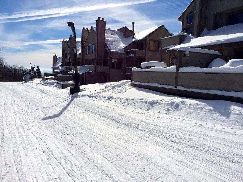 The 2021 SKI SEASON IS HERE! Rent our Ski In/Out unit on the Villages Trail., alquiler vacacional en Rockwood