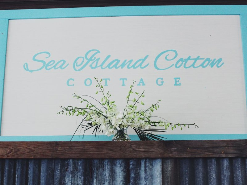 Book  this sweet cottage at the beach., vacation rental in Harbor Island