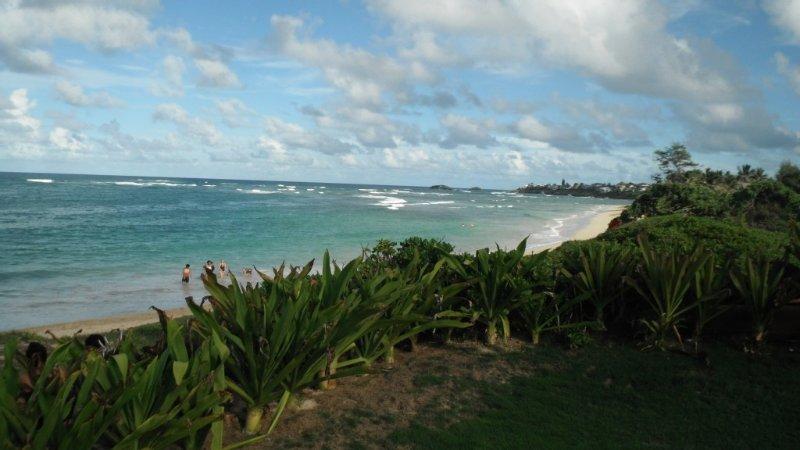 Beautiful 2 Bedroom Hukilau Beach Apt.- 30 night minimum, alquiler de vacaciones en Laie